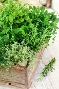 Fresh green herbs in old wood box.